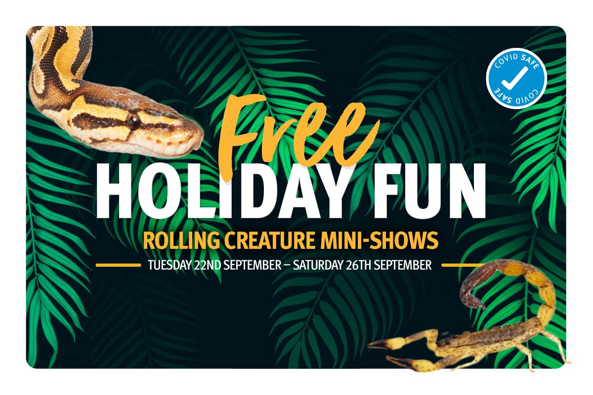Rolling Creature Mini Shows